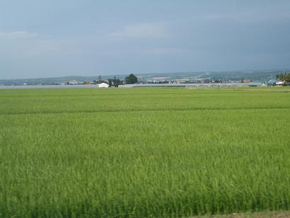 北海道の景色。.JPG