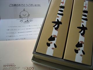 IMG_2455blog.JPG