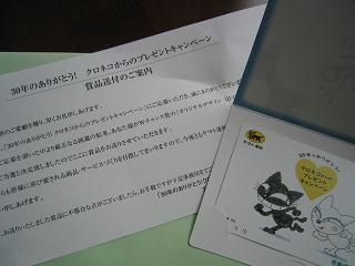 IMG_2931blog.JPG