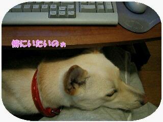 IMG_3242blog.jpg