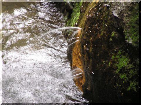湧き水480x.jpg