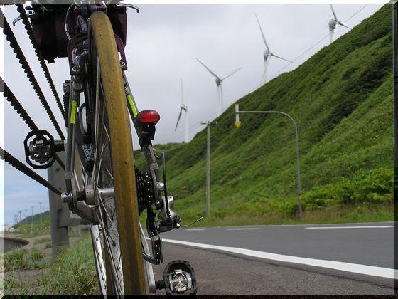 自転車後ろ.jpg