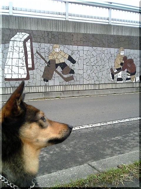陸橋&りむ.jpg