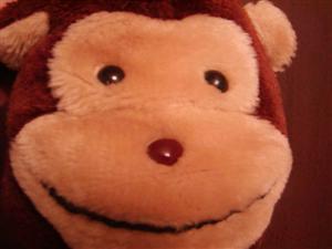 猿のお母さん.jpg