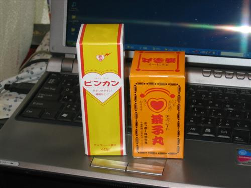 fuji1.jpg