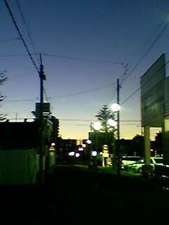 040810_1914~01.jpg