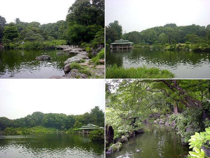 kiyosumi3.JPG