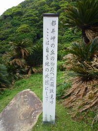 都井岬の丘