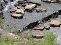 勇舞さわやか公園内を流れる川