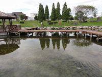 公園内の池の風景2