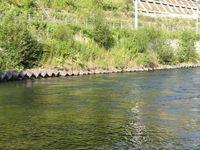 名水ふれあい公園施設内を流れる大きな川の風景。