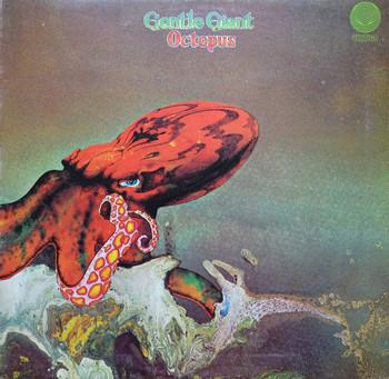 Gentle Giant Octopus 1