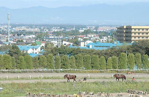 町の中の競馬場