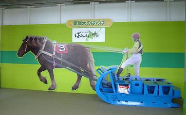 馬はだれ?