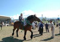 共和かかし祭 輓馬競技大会(10)
