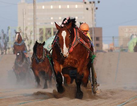 レース。後ろにエリコ