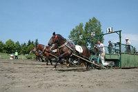 瓜幕競ばん馬競技大会(1)