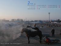 2011年2月カレンダー その3 -20℃の日の風