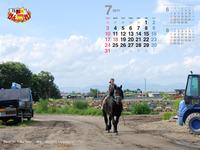 2011年7月カレンダー