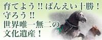 育てよう!!ばんえい十勝!!