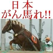 日本がん馬れ!