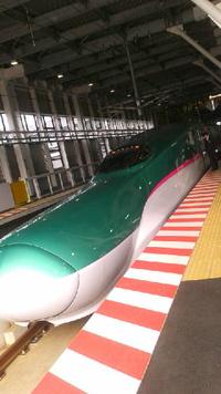 昨日、北大通学ランでツツジ、今日は朝飛行機で岩手へ、帰りは北海道新幹線