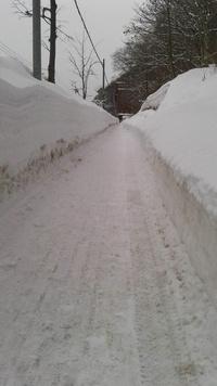 雪の回廊ラン