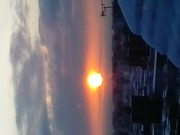 厳寒に朝、ラン友武蔵を待つ。