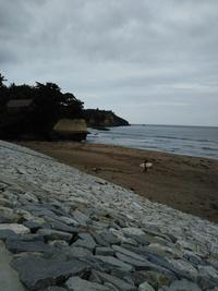 塩釜から七ケ浜、仙台港、七北田川26km
