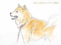 プキちゃんスケッチアルバム更新
