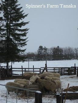 GW初日は雪