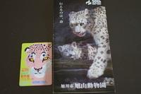 旭山動物園に行って来ました