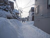 町内会の排雪日です