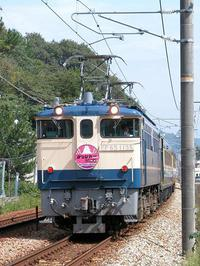 EF651135