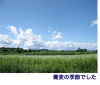 北海道養蜂旅