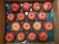 リカちゃんマーケットの「ふじりんご」届きました♪