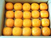 必見!【柿を3週間、長持ちさせる方法!】