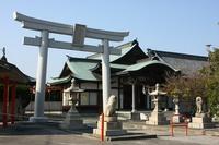津島ノ宮の桜