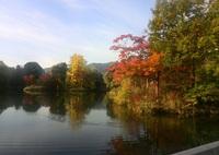 今朝の中島公園