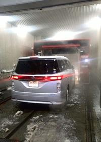 大地の洗車
