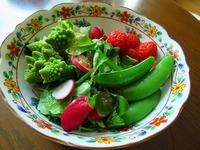 家庭菜園 スナック豌豆