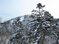 千歳・支笏湖 氷濤まつり Ⅳ