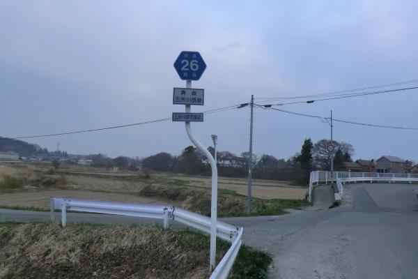 r26ヘキサ標識