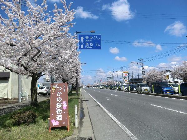 ただほど安いものはない:青森県...
