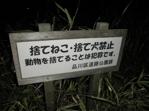 RA-MEN ICHI (武蔵小山) 小ラーメン