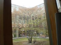 【画像】函館中央図書館の中庭