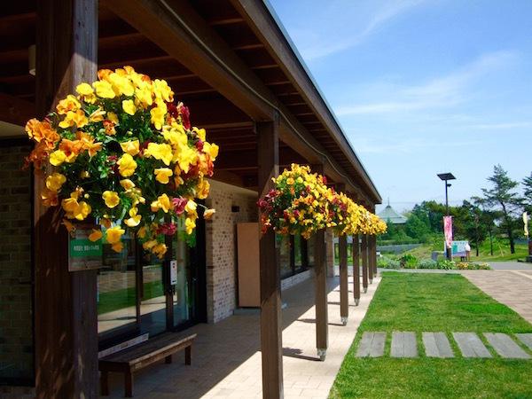 花と調和するまち 恵庭市