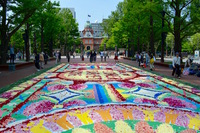 笑顔が溢れる SAPP‿RO Flower Carpet