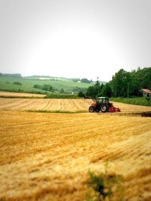癒しの風とラベンダー 農業が作る美しさ