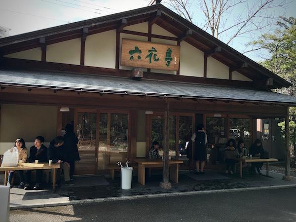 お引越しのご挨拶 桜咲く北海道神宮